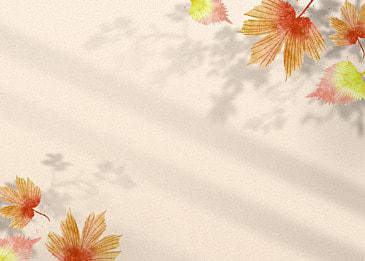 flower shadow gradient watercolor decorative background
