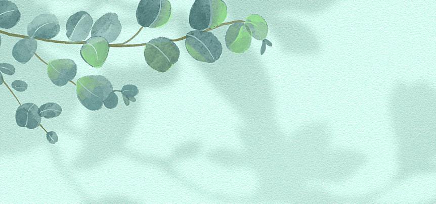 flower shadow green leaf decorative background