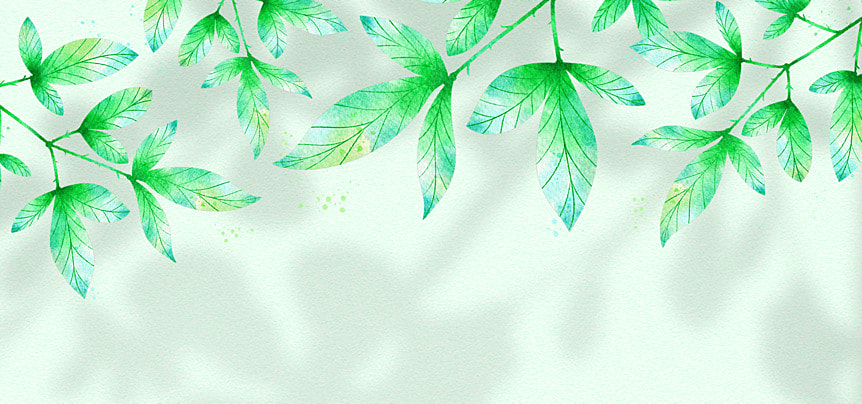 flower shadow green leaves watercolor texture background