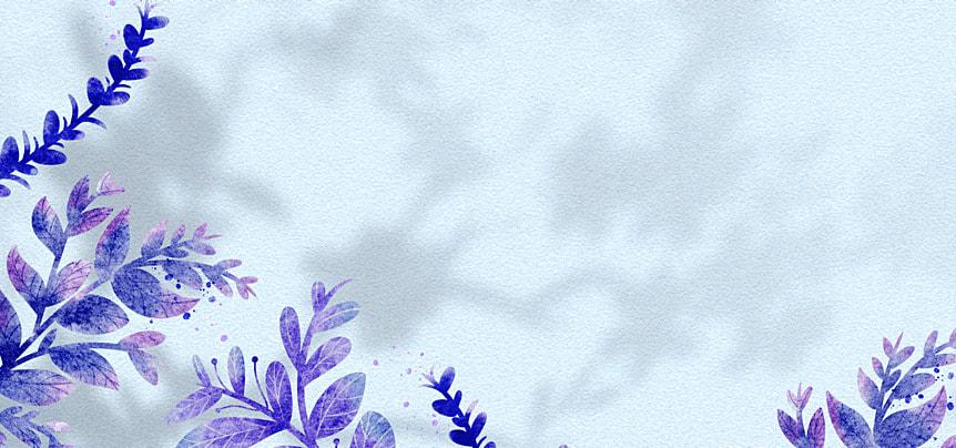 flower shadow plant leaf pattern decorative background