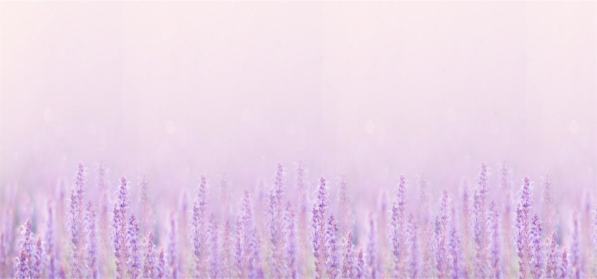 Lavender Texture Design Wallpaper Background, Pattern ... - photo#26