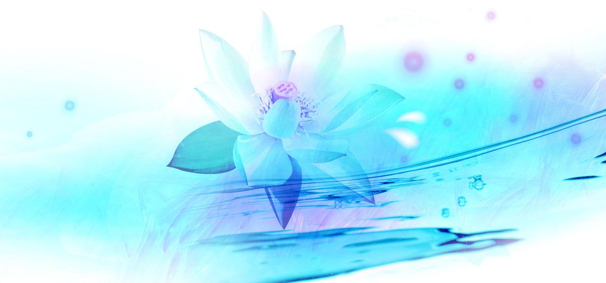 Lotus Flower Floral Design Background Wallpaper Art Graphic
