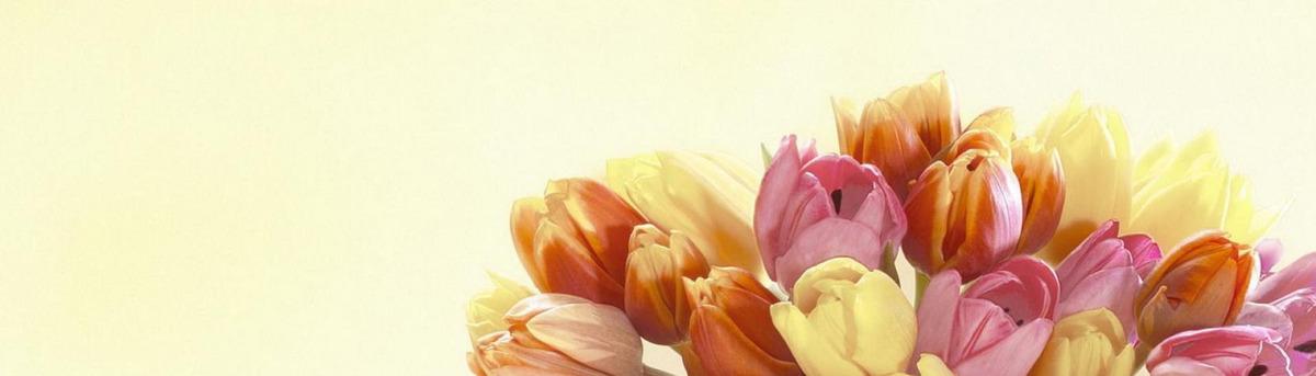 Fleurs d été de jardin de fleurs de bijoux en automne chaud Fleur ...