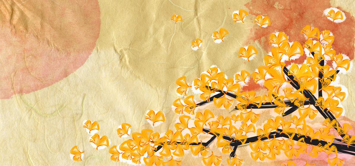 Fleur De Coton Base Dessin Floral Graphique Schema La Texture Image