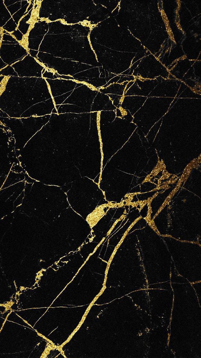 Cestino Star Marmo Rete Trama Sfondo Echinoderm Scultura Arte