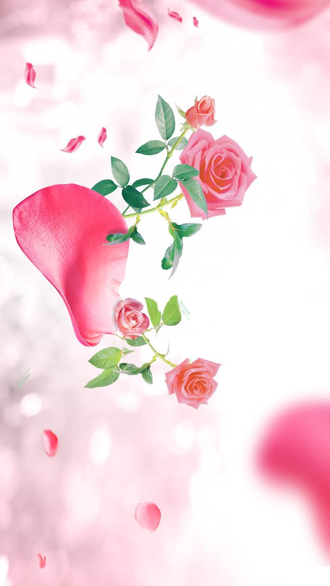 pink flower floral decoration background spring art blossom