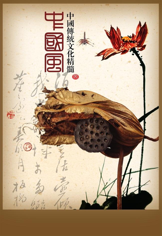 turtle background.html