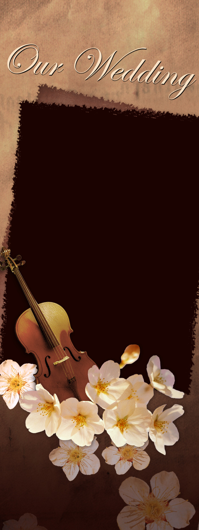 Bowed Stringed Instrument Stringed Instrument Musical ...