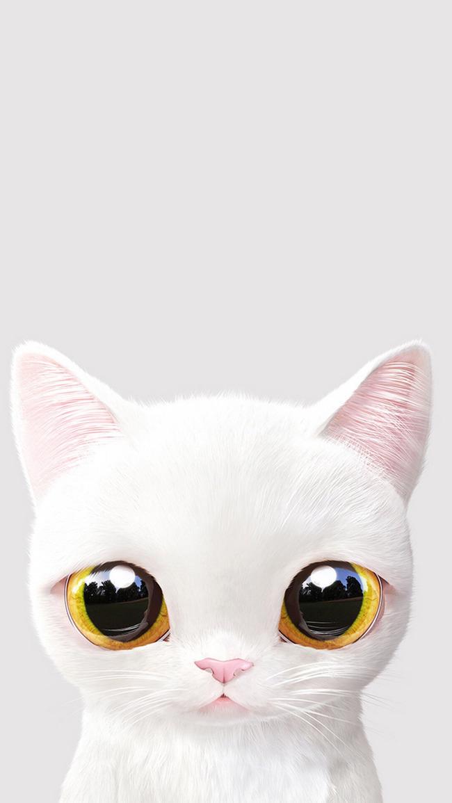 Vedi Gatto Carino Sfondo Animale Pet La Pelliccia Felina Immagine Di