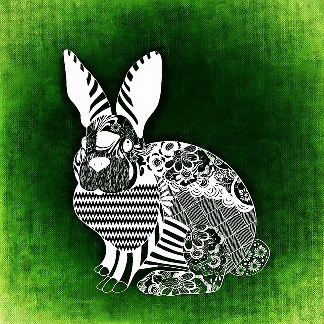 Bunny Rabbit Symbol Decoration Black Money Business Background