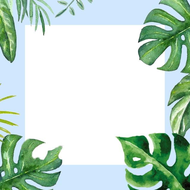 النباتات الخضراء أوراق الشجر خلفية زرقاء خلفية بسيطة Psd الخريطة الرئيسية فنون جديدة صورة الخلفية للتحميل مجانا