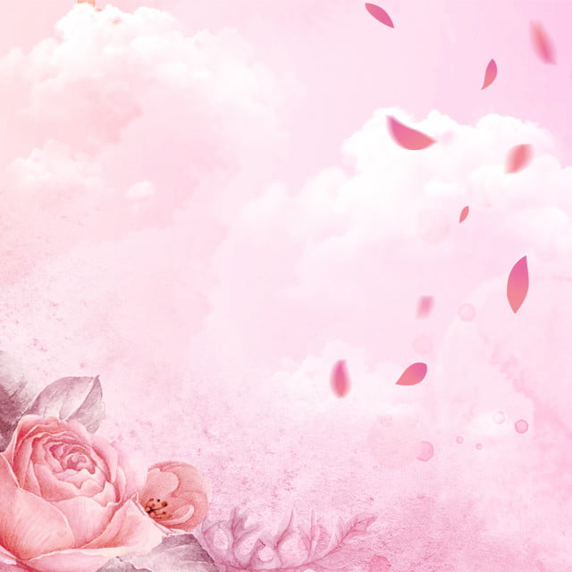 Pink Romantic Rose Flower White Clouds Background, Pink