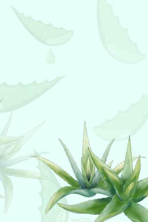 Plante Cosmétique Dessin Animé Main Affiche Matériel été