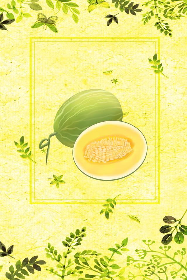 Fresh Cantaloupe Fruit Poster Cantaloupe Poster Cantaloupe Display Board Fruit Poster Background Image For Free Download I have been watering this morning and found. pngtree