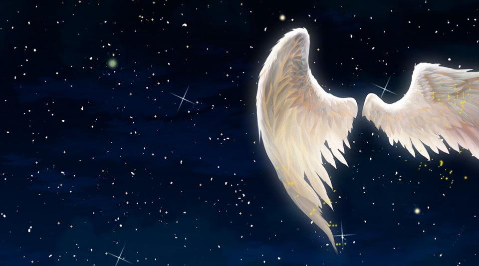 Angel Wings 2 Pictures, Angel Wings 2 Material Download, Angel Wings