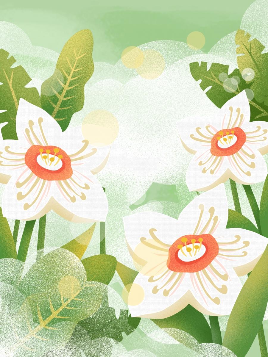 Hand Drawn Spring Flower Background Design Flowers Flowers