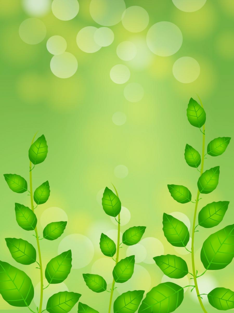 الربيع خلفية خضراء خلفيات الربيع أخضر طازج منعش صورة الخلفية للتحميل مجانا