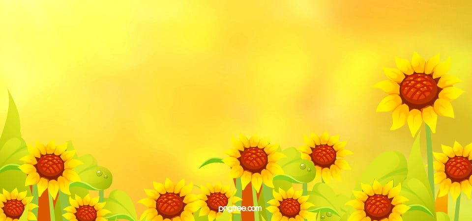 Sunflower Sunflower Background Banner Beautiful