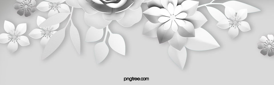 White paper cut flowers background white paper flowers flower white paper cut flowers background mightylinksfo