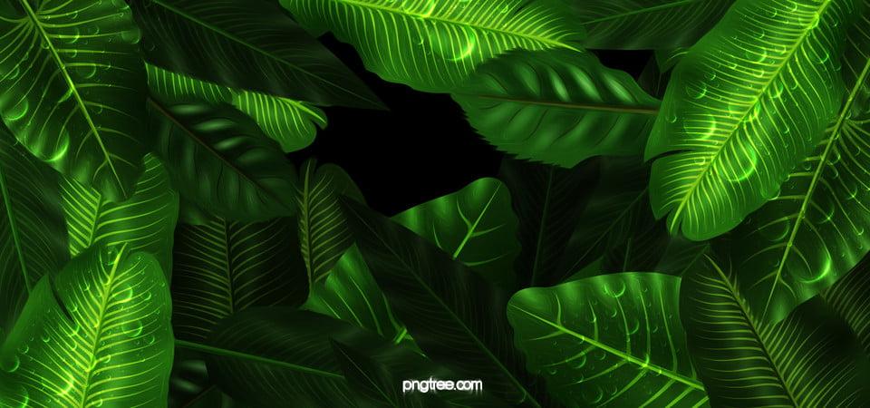 green book descargar gratis