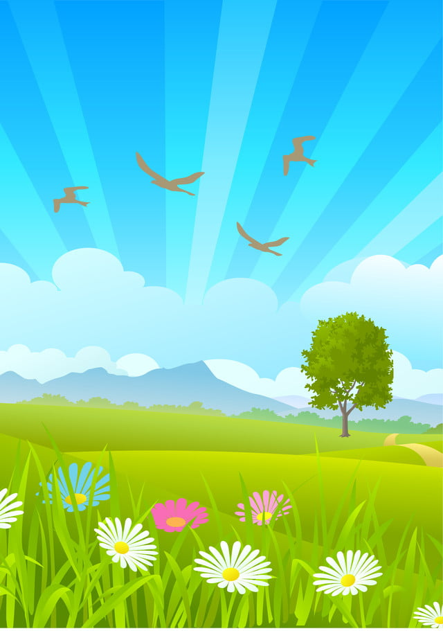 Spring Background, Spring, Women, Sunlight Background ...