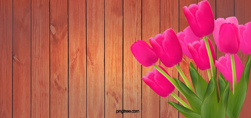 Flower Images Stock Photos amp Vectors  Shutterstock