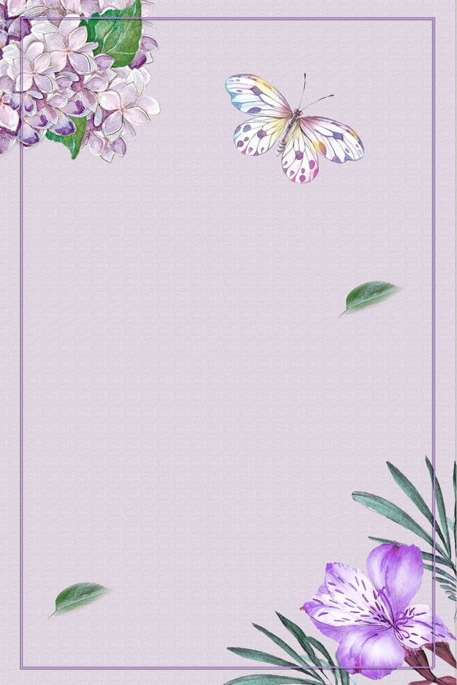 فريم تصميم زهري زهرة الخلفية صورة بطاقة وردي صورة الخلفية