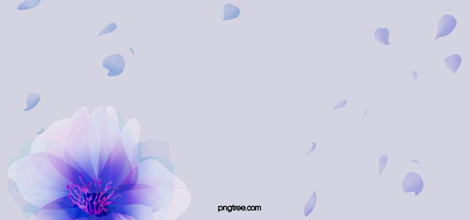 gambar cartoon cinderella  gambar lmn