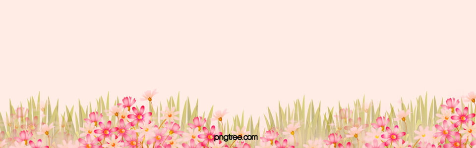 romantic pink flowers background, Pink Background, Romantic Background, Flowers Background, Background image