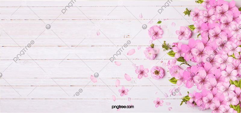 Pink flowers background pink petal board background image for pink flowers background mightylinksfo