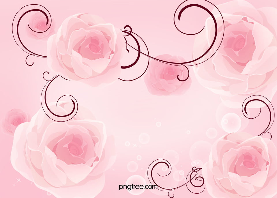 Tv Wall Background Pink Roses Pink Rose Gradual Background