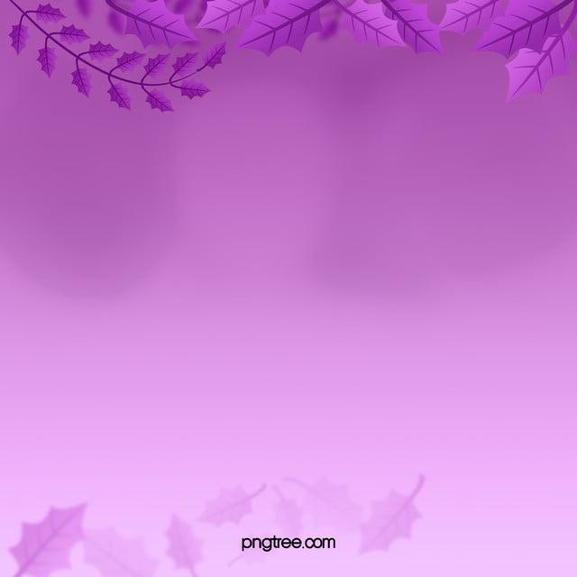 Lilac Pink Design Wallpaper Background Art Light Graphic