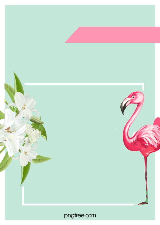 Fundo Elegante Flamingo H5 Cor De Rosa Flamingo Moda