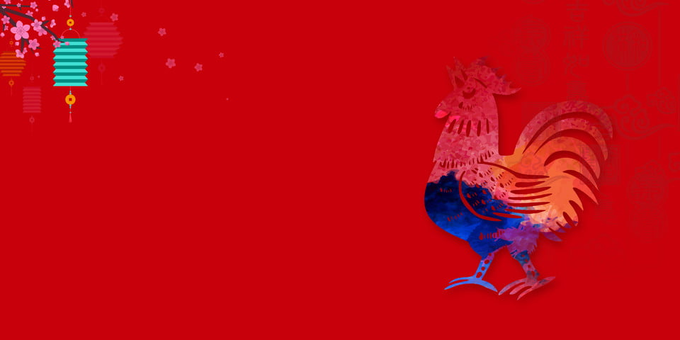 Hen Bird Animal Cock Background, Poultry, Farm, Livestock Background