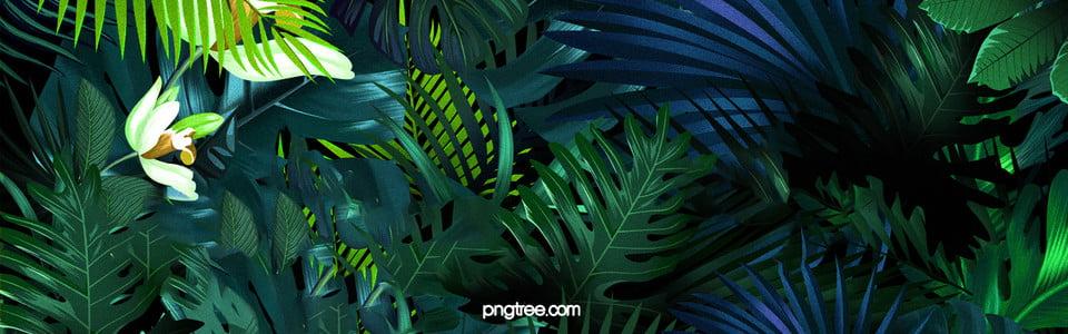 очарование леса рекламные плакаты фон, зеленый, Круто, Поощрение, Изображение на заднем плане