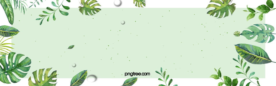 Cartoon Fresh Leaf Frame Summer Banner, Fresh, Leaf, Frame ...