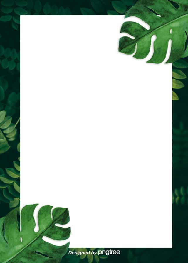 أوراق الشجر الخضراء تصميم خلفية الحدود أوراق النباتات منعش صورة الخلفية للتحميل مجانا