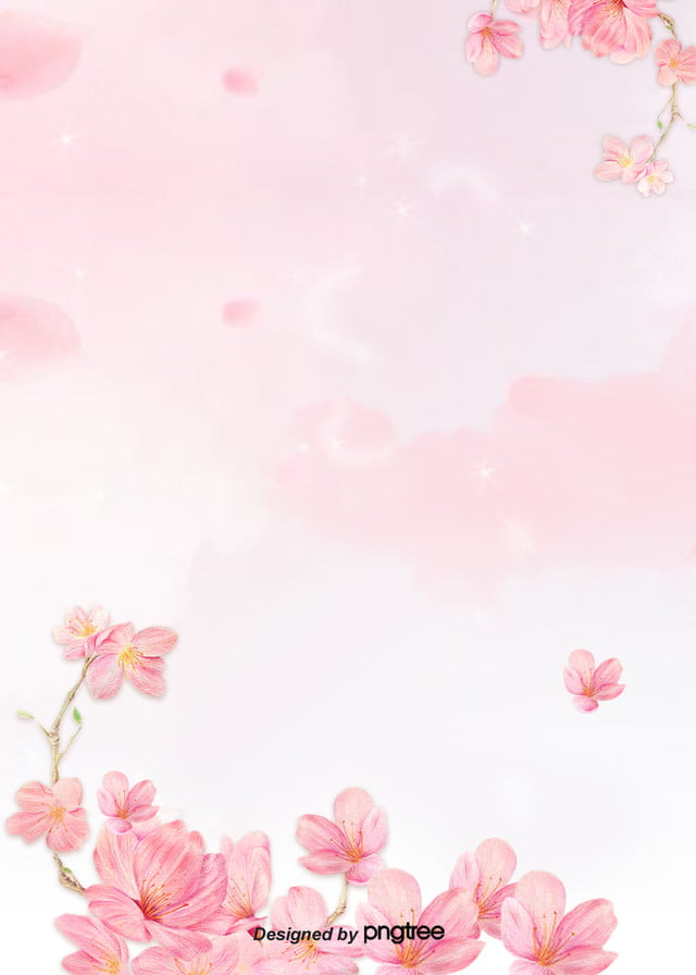 Pink Flower Petal Background Soft Pale Valentines Day