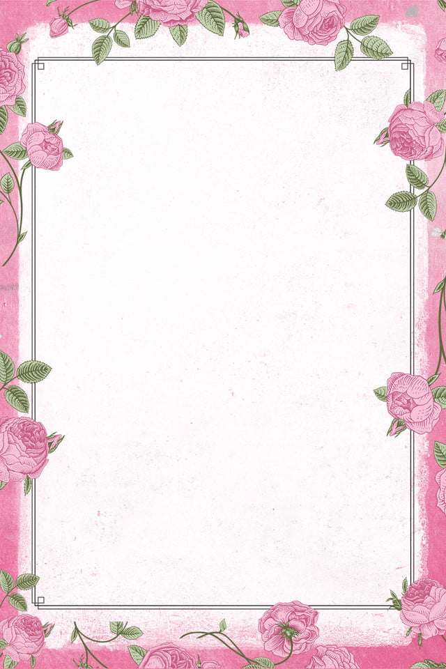 Plant Flowers Border Background Flower, Beautiful Flower ...
