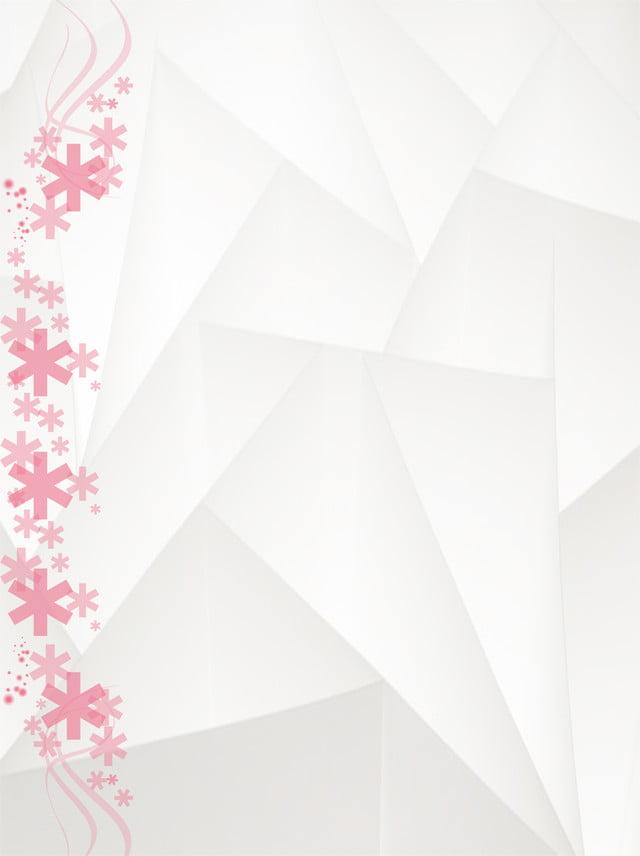 خلفية بيضاء وردية خلفيات ناعمة خلفية زهرة يبق صورة الخلفية