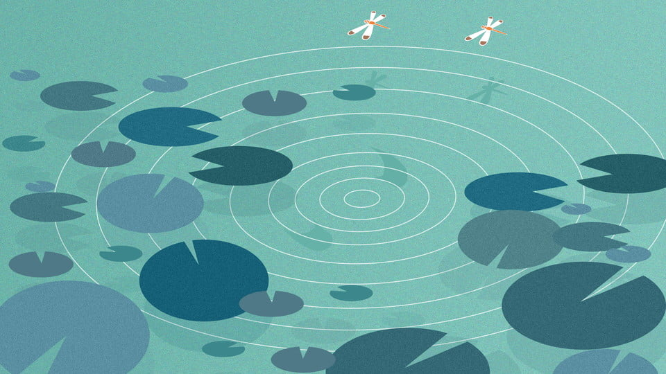 Design De Fond Simple Bande Dessinée Lotus Pond Feuille