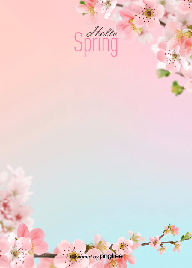 Aesthetic Fresh And Simple Background Of Cherry Blossoms In Spring Fashion Spring Plant