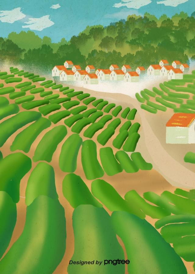 Planta Verde Casa Adosada Verde Planta Campo En Terrazas