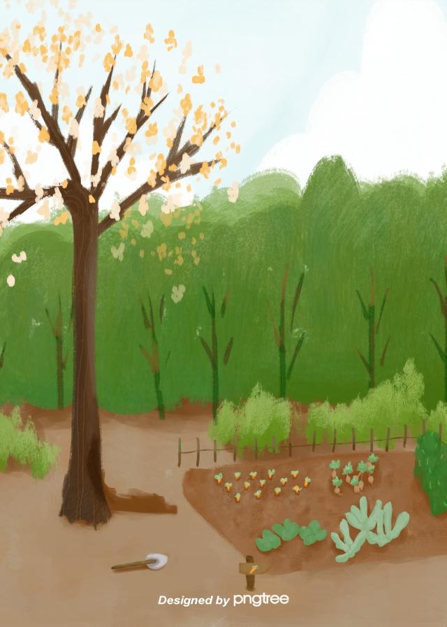 Gambar Alat Penanaman Taman Pokok Musim Panas Musim Panas Pokok Pokok Kebun Sayur Latar Belakang Untuk Muat Turun Percuma