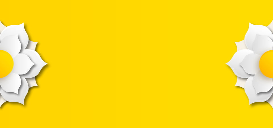 3d Flowers On Yellow Background Wallpaper Background Banner Background Image For Free Download