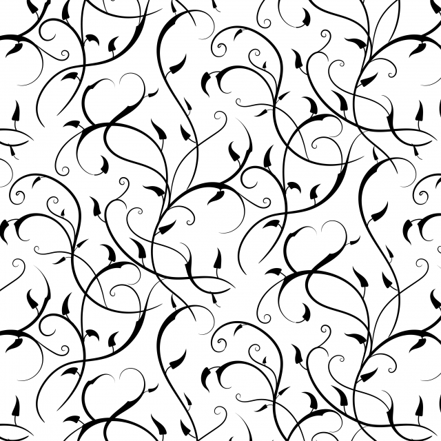 Abstract Black Branches With Leaves Pattern On White Background Continue Line Drawing Background Image For Free Download