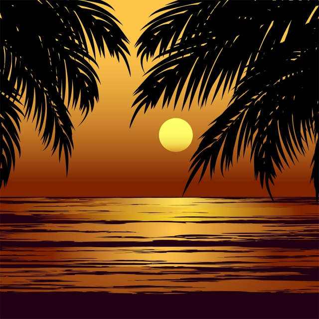 Palm Beach Sunset Beach Background Wallpaper Background Image