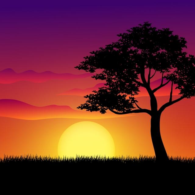 закат природа пейзаж с большим деревом, дерево, трава, декорации. Фоновое  изображение для бесплатной загрузки