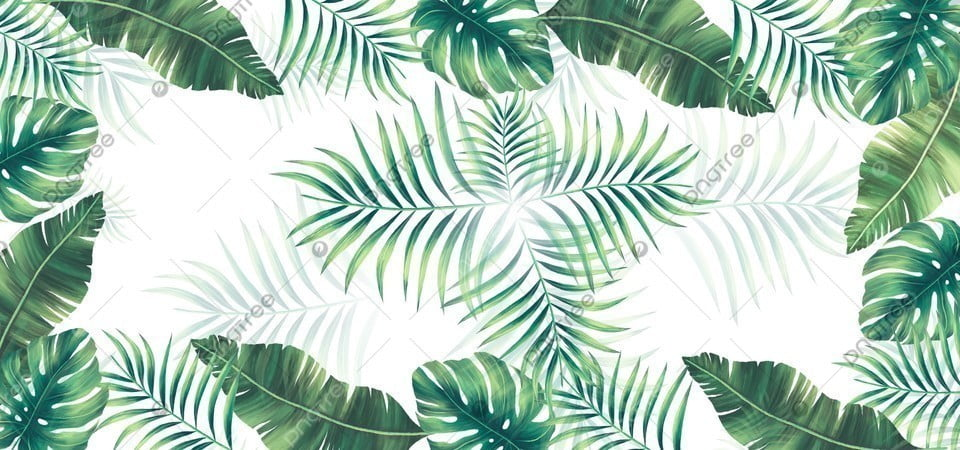 Green Tropical Leaves With White Background Green Tropical Leaf Background Image For Free Download 22 x separate elements in png with transparent background & jpg with white background. https pngtree com freebackground green tropical leaves with white background 1181043 html
