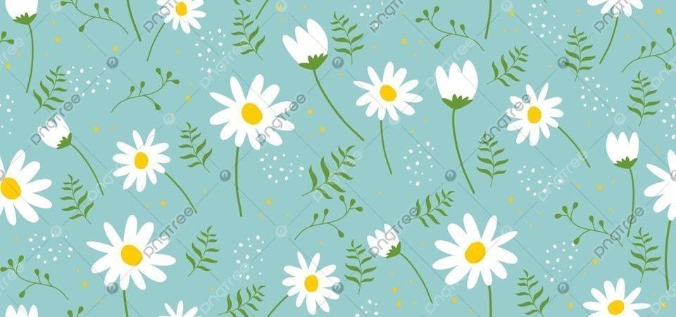 Latar Belakang Pola Bunga Dengan Bunga Matahari Putih Daun Hijau Terisolasi Pada Latar Belakang Hijau Pola Bunga Floral Matahari Gambar Latar Belakang Untuk Unduhan Gratis